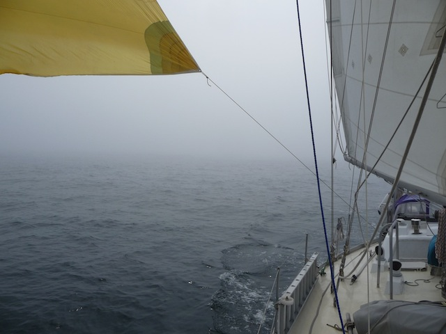 Flying a spinnaker in the fog