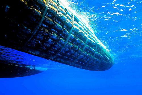 Plastiki underwater view
