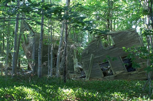 Ruined house on Little Chebeague Island