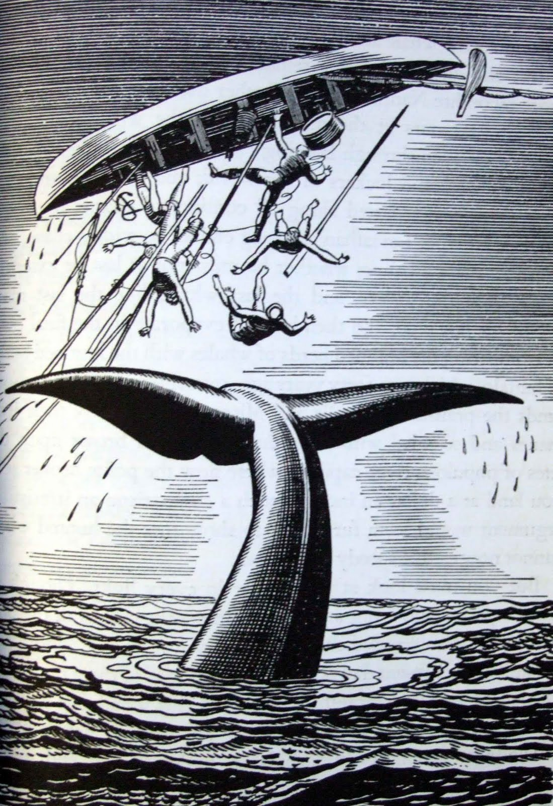 Rockwell Kent does Moby Dick