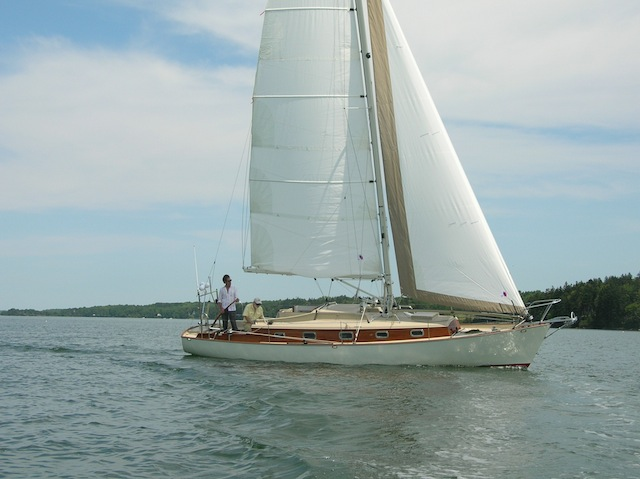 Petrel under sail
