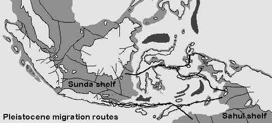Prehistoric sea levels in Indonesia
