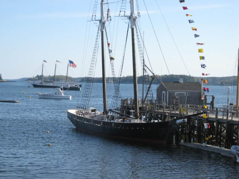 Shenandoah in Boothbay