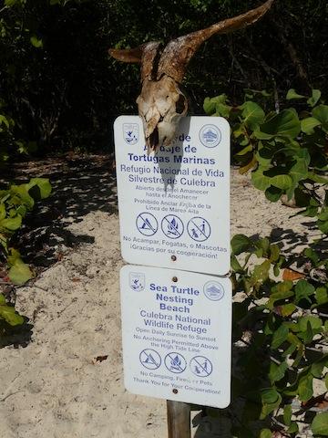 Beach sign on Culebrita