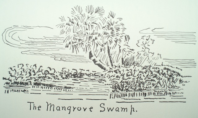 Plummer illo swamp