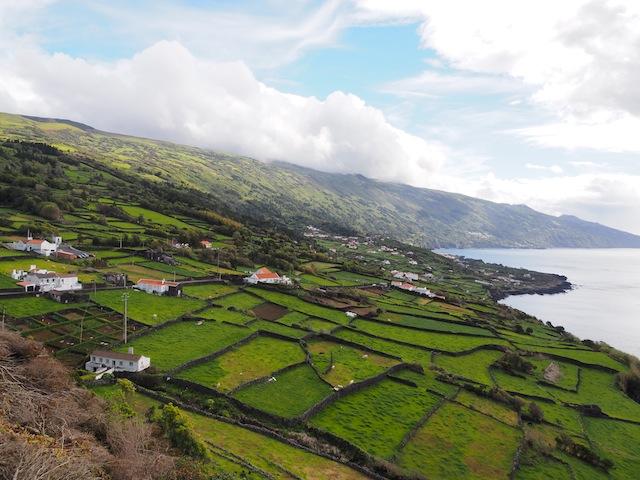 Pico coast