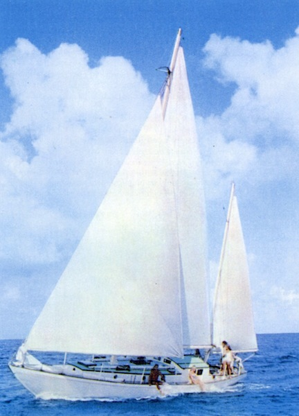 Neophyte sailing
