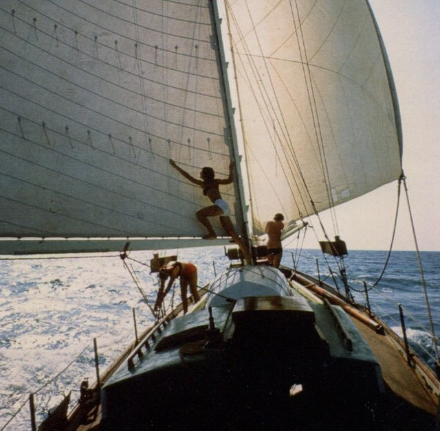 Neophyte Too sailing