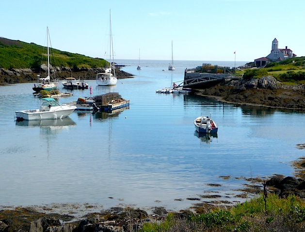 Damariscove harbor