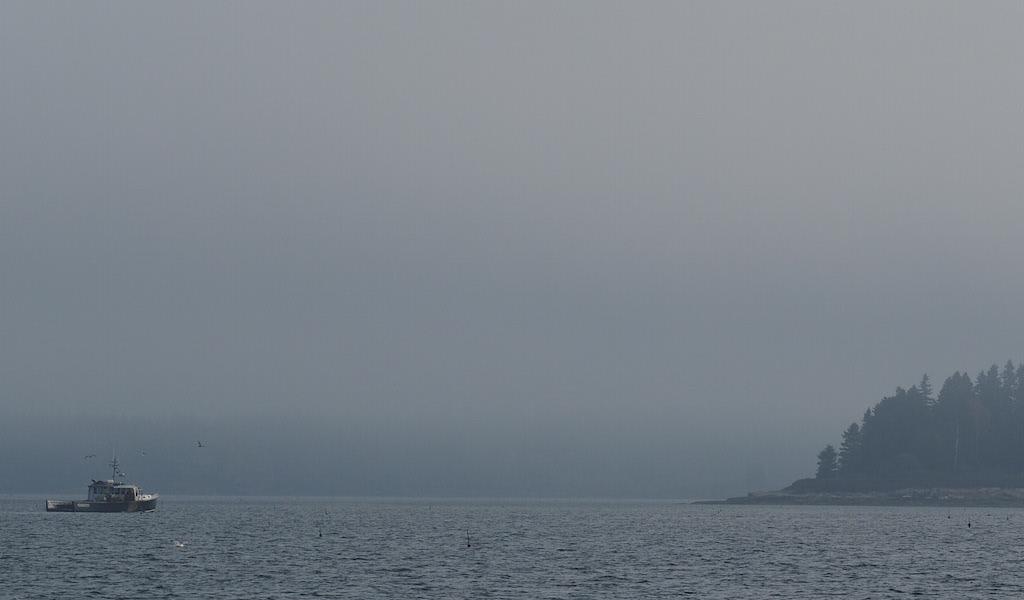 Fog off Harpswell
