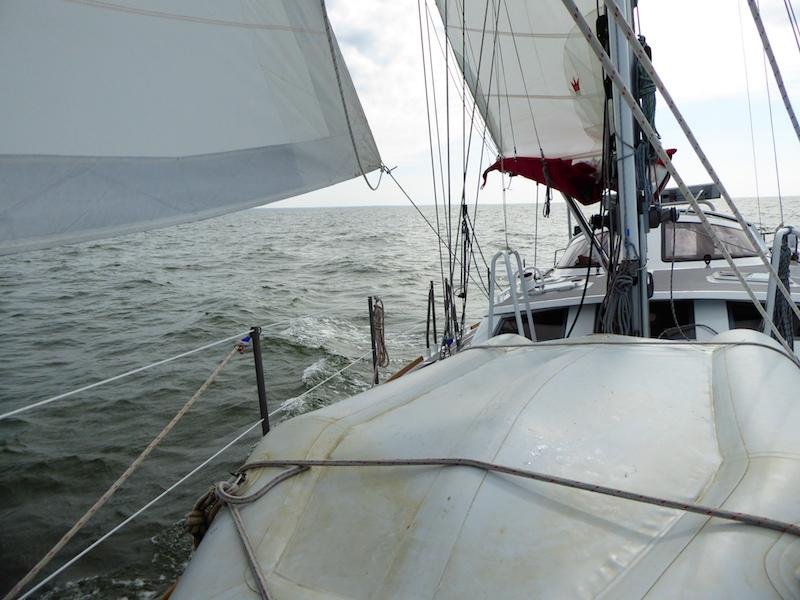 Del Bay sailing