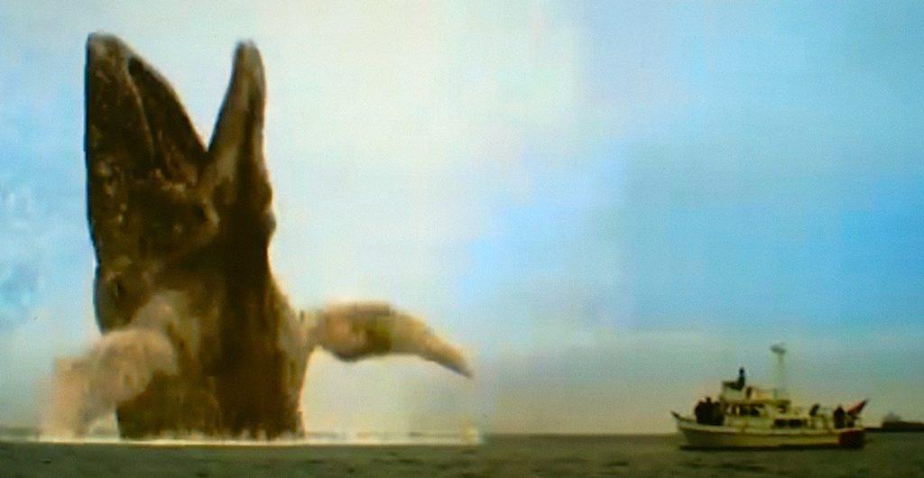 2010; Moby Dick still photo