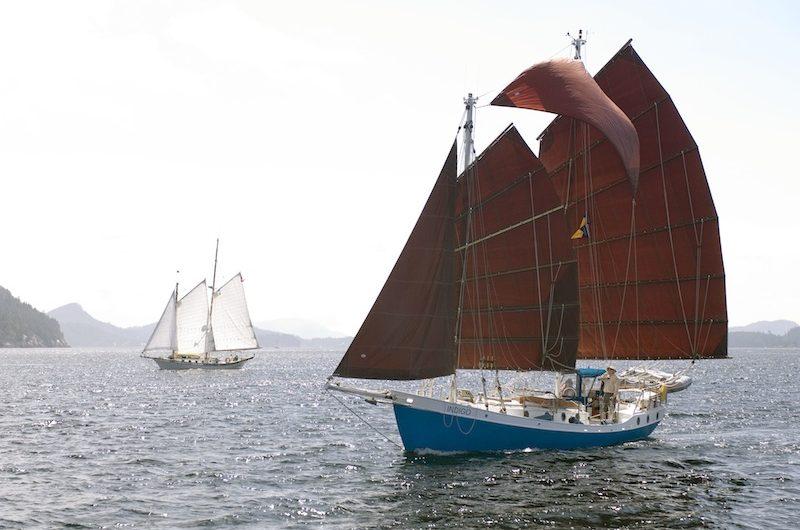 Colvin Gazelle under sail