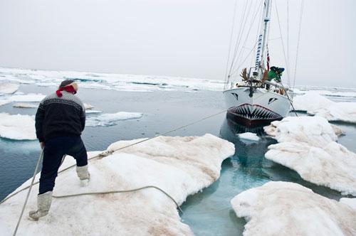 Berserk in Antarctica
