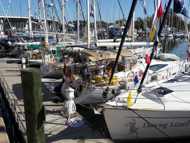 Caribbean 1500 fleet in Hampton