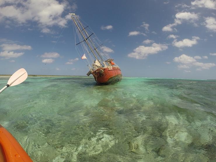 Primadonna aground